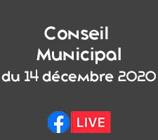 CONSEIL MUNICIPAL DU 14 DECEMBRE 2020 EN FB LIVE