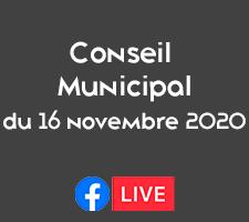 CONSEIL MUNICIPAL DU 16 NOVEMBRE 2020