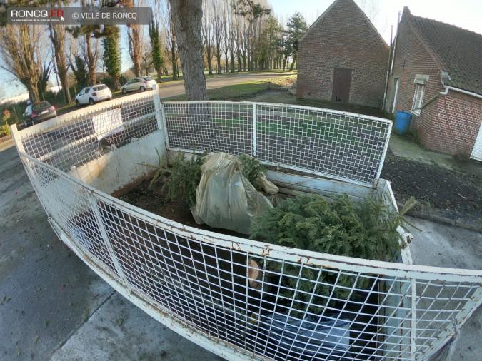 2019 - collecte sapins